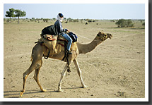 Barbara on her camel